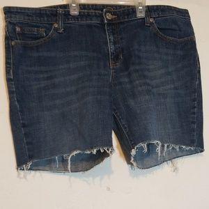 Gap1969 Premium Denim Cut Off Shorts Size 16